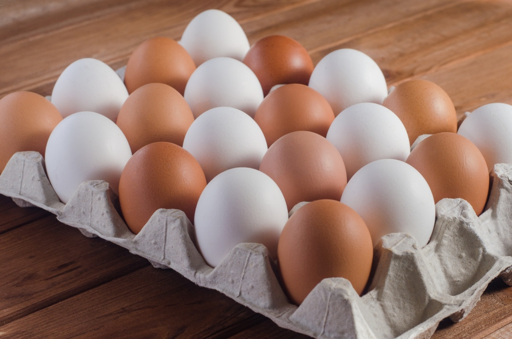 Difference Between Brown Eggs and White Eggs?